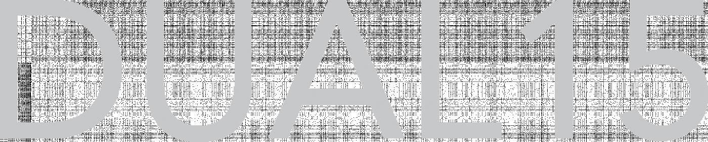 Dual15 Logo